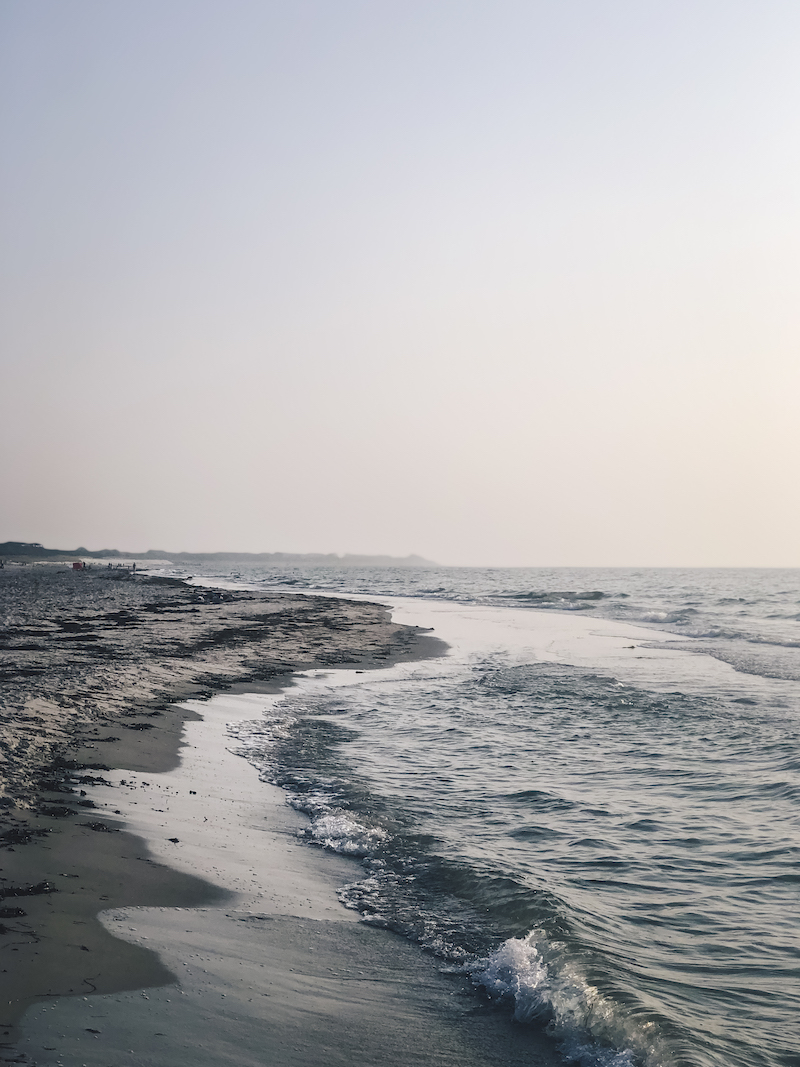 Die Küste am Weststrand auf Fischland-Darss-Zingst