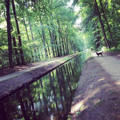 Kanal im Schlosspark Ludwigslust