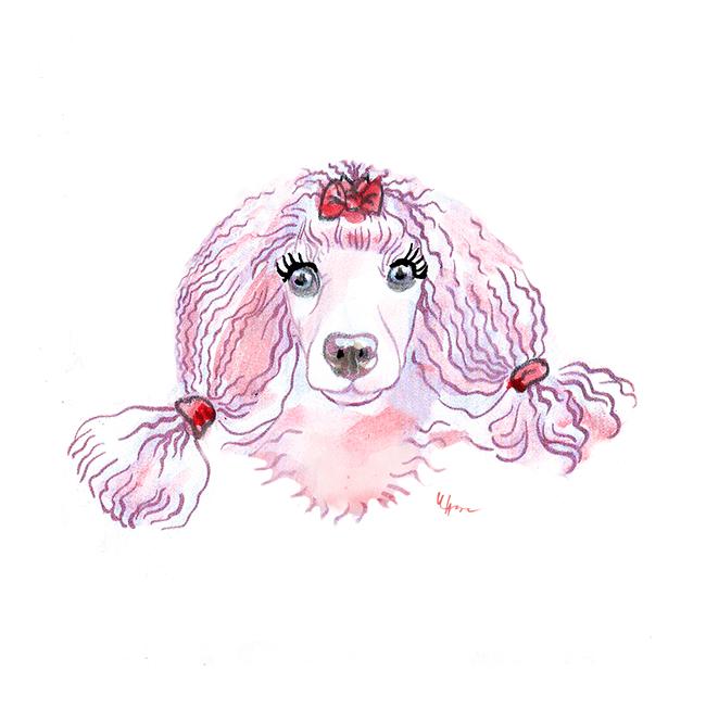 Meine aktuelle Welt-Kolumne: Unser Hund soll schöner werden.