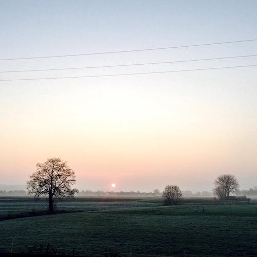 Morgens im Ampertal