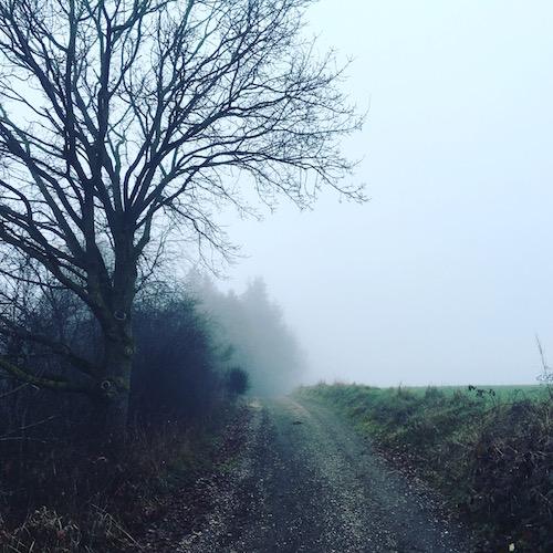Nebel im Ampertal. Passt perfekt zu meinen Filmempfehlungen.