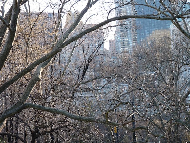 Central Park ...