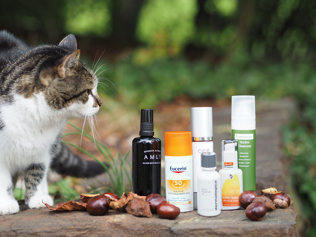 Beautycat Streifer Ackstaller mit meinen liebsten Herbstprodukten